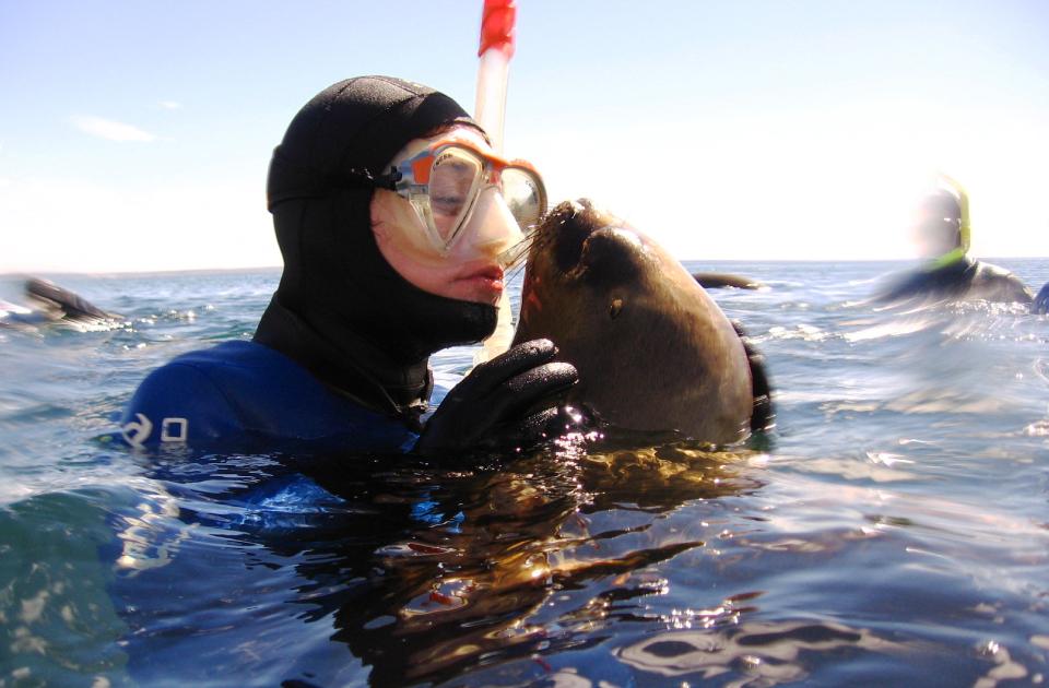 Snorkeling Con Lobos Marinos