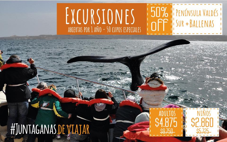 Península Valdes Sur + Avistaje De Ballenas Embarcado (50% Bonificado / 50 Cupos)
